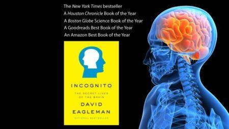 TED Talks - David Eagleman: Possiamo creare nuovi sensi per l'essere umano ?